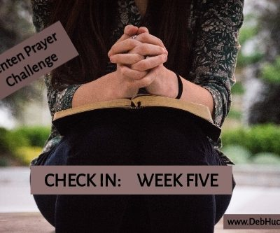 CHECK IN: Week Five (23,24,25,26,27,28)