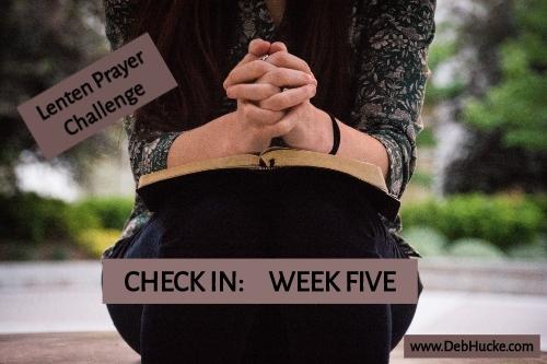 Check In Week Five.jpg