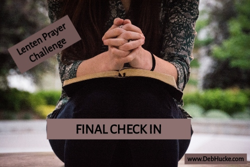 Final Check In.jpg